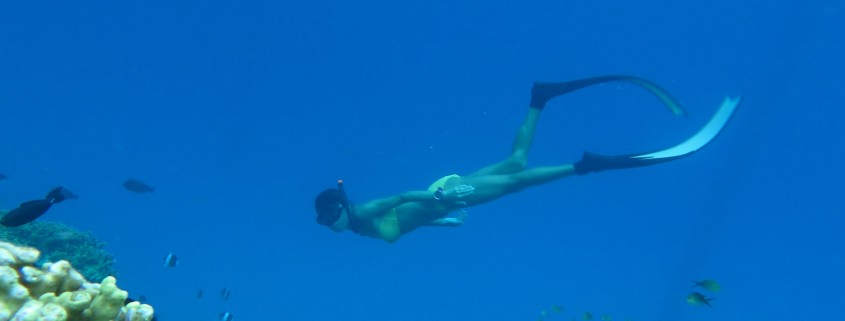 Free diving courses Hideaway Maldives